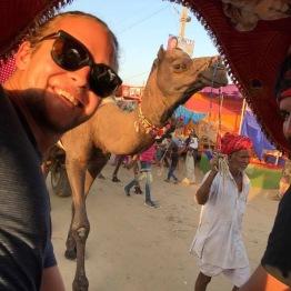 Pushkar Festival 2016