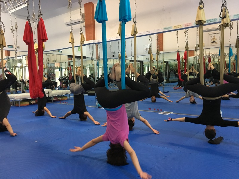 tamer begum master instructor trainer antigravity fitness